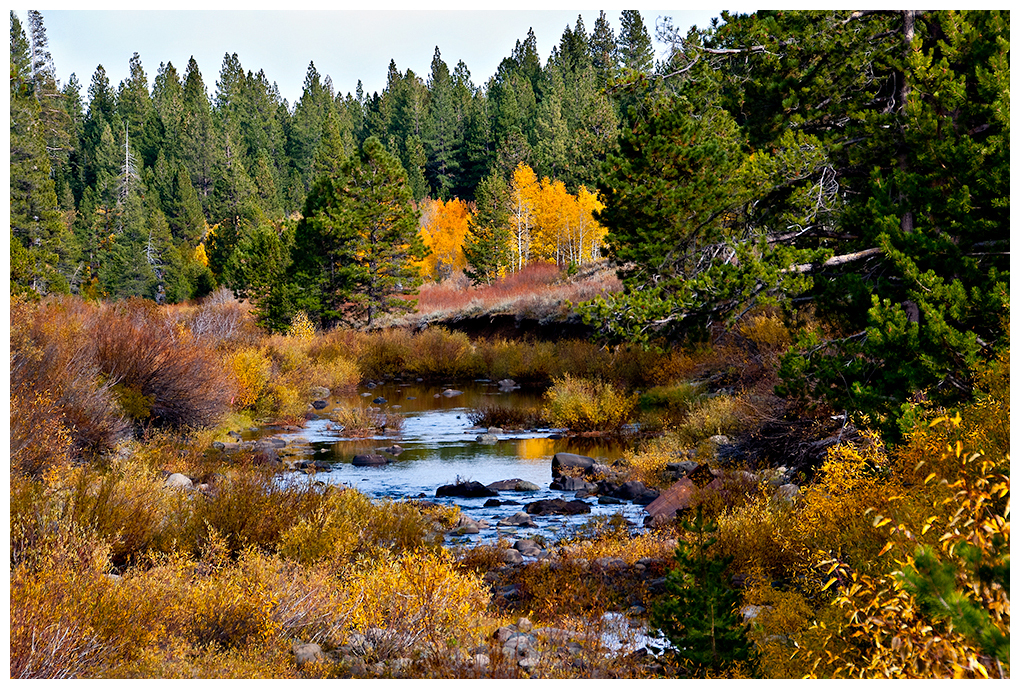Fall in the Sierra