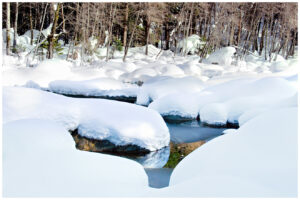 Snow accumulating on the Yuba River