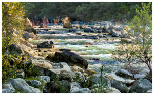 Waves rolling down the Yuba River