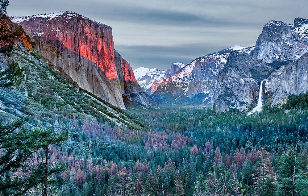 Yosemite Glow