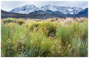 Photo from Mono Lake to the mountains of the eastern Sierra