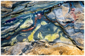 Photograph of a tide pool in Point Lobos State Park. It was low tide and these beautiful rocks and shells were visible. I especially like the eyes peaking out from under the large rock.